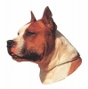 AMERICAN STAFFORSHIRE TERRIER II