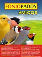 AVICOR FONIOPADDY 1KG